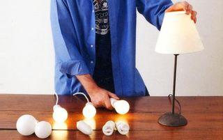 Clf bulbs