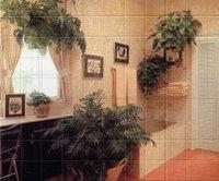 Bathplants